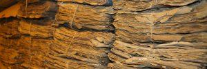 An vielen Orten in Thüringen sind alte Akten und Dokumenten vom Verfall bedroht.